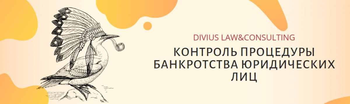 Контроль процедуры банкротства юр лиц